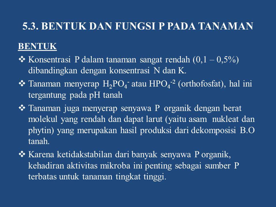 5.3. BENTUK DAN FUNGSI P PADA TANAMAN