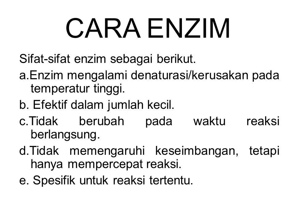 CARA ENZIM