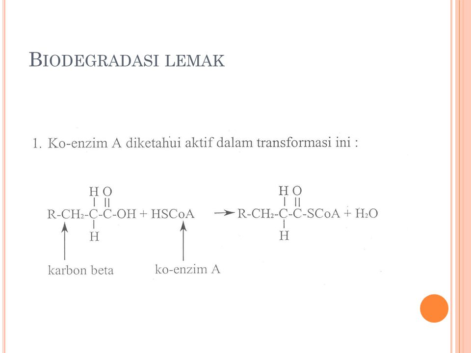 Biodegradasi lemak