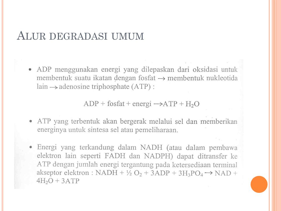 Alur degradasi umum