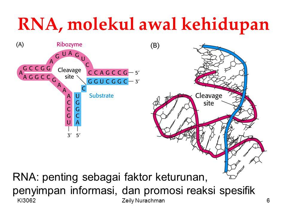 RNA, molekul awal kehidupan