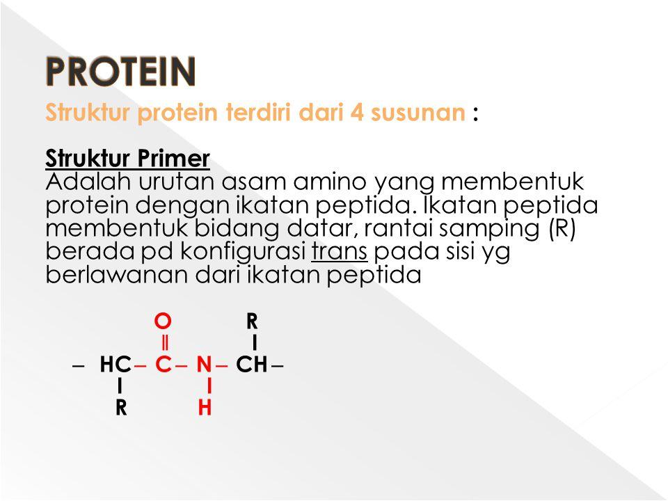 PROTEIN Struktur protein terdiri dari 4 susunan : Struktur Primer