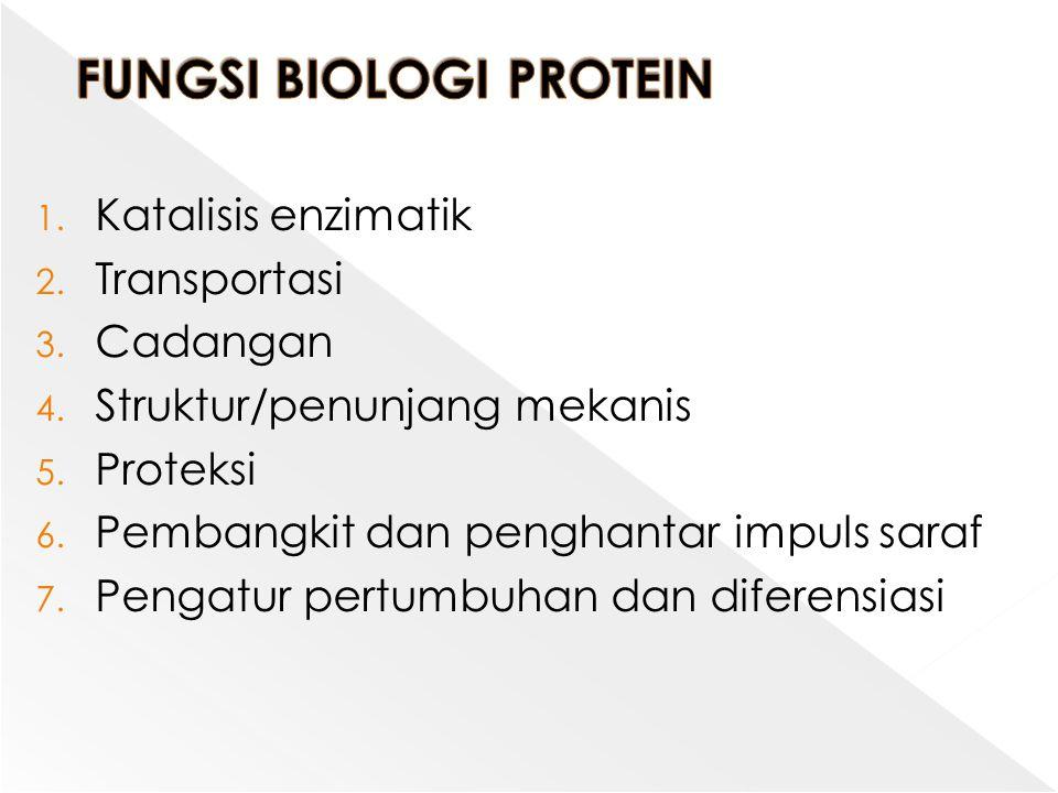 FUNGSI BIOLOGI PROTEIN