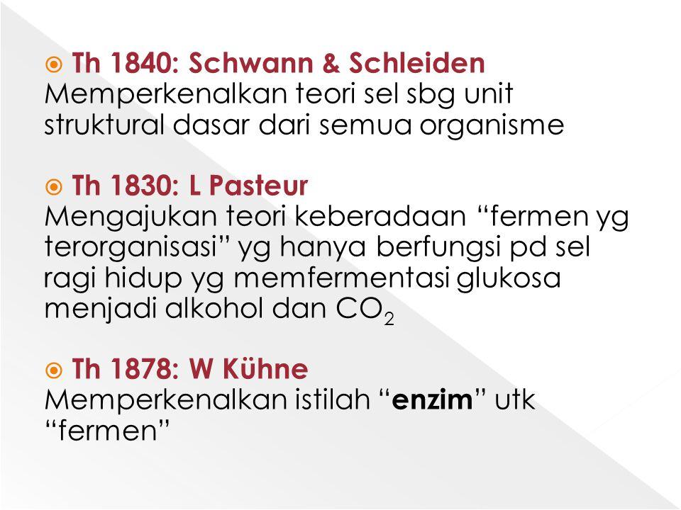 Th 1840: Schwann & Schleiden