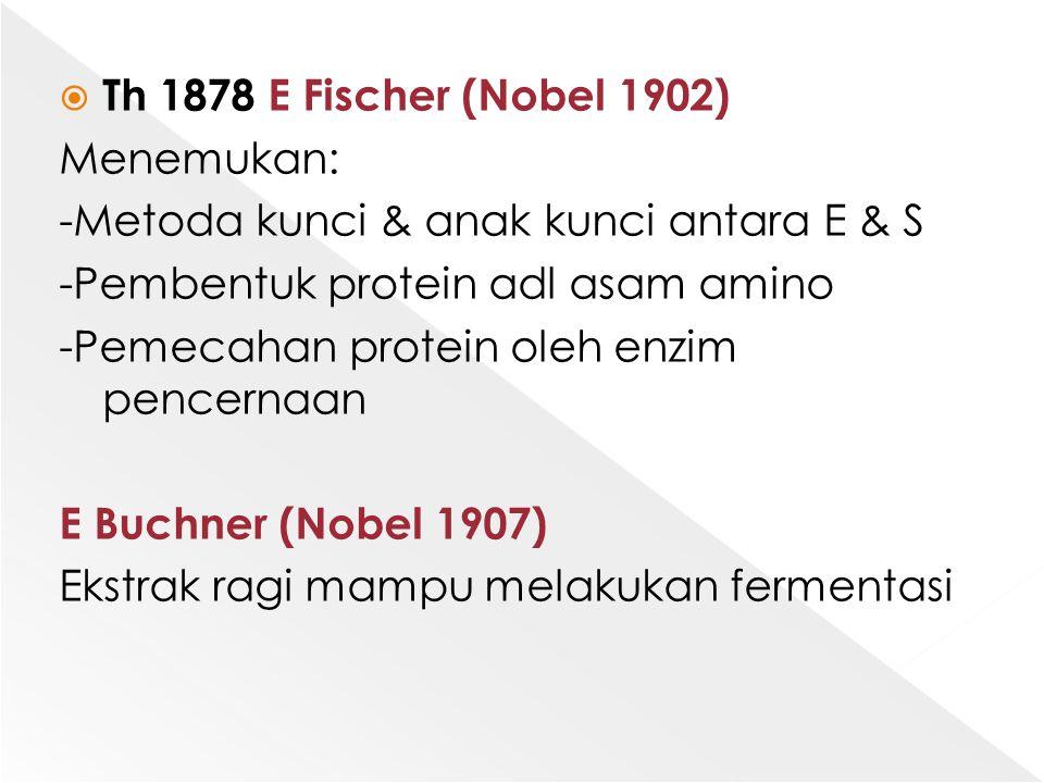 Th 1878 E Fischer (Nobel 1902) Menemukan: -Metoda kunci & anak kunci antara E & S. -Pembentuk protein adl asam amino.