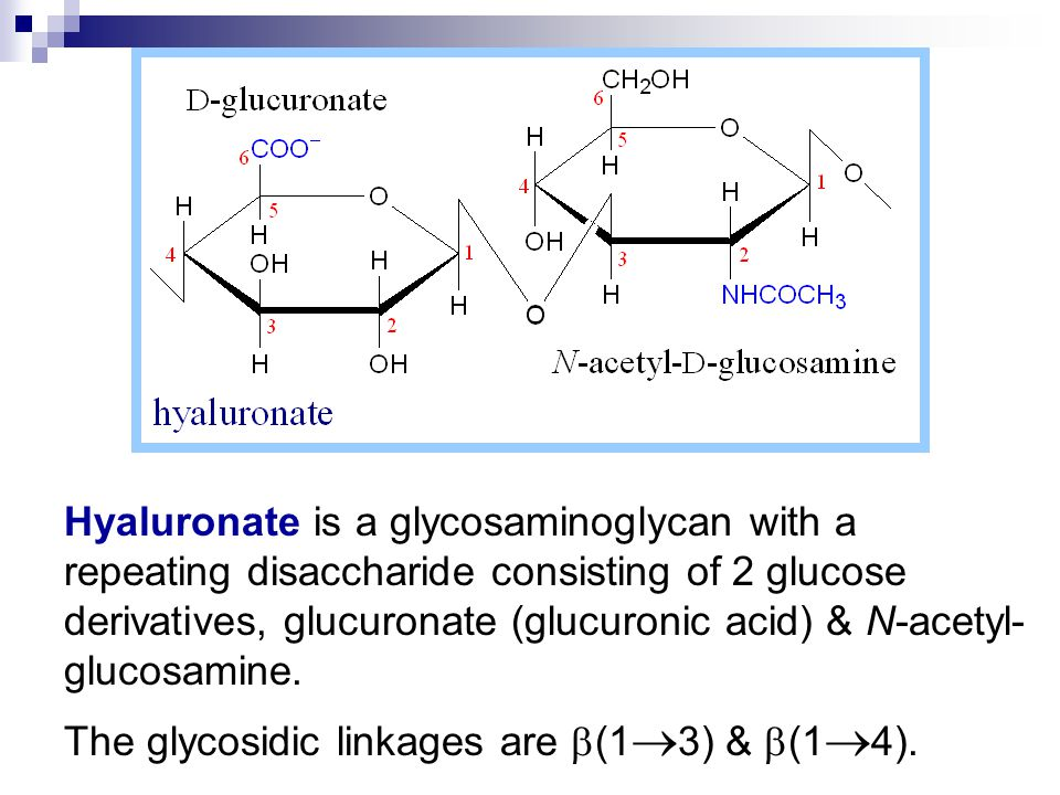 Hyaluronate is a glycosaminoglycan with a repeating disaccharide consisting of 2 glucose derivatives, glucuronate (glucuronic acid) & N-acetyl-glucosamine.