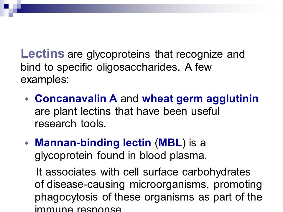 Lectins are glycoproteins that recognize and bind to specific oligosaccharides. A few examples: