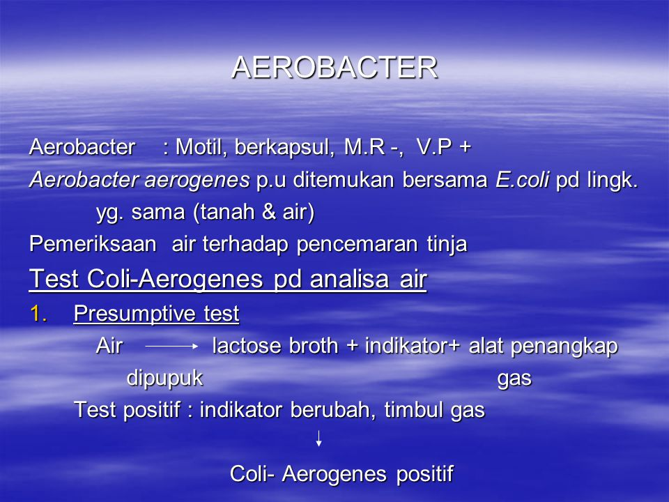 AEROBACTER Test Coli-Aerogenes pd analisa air