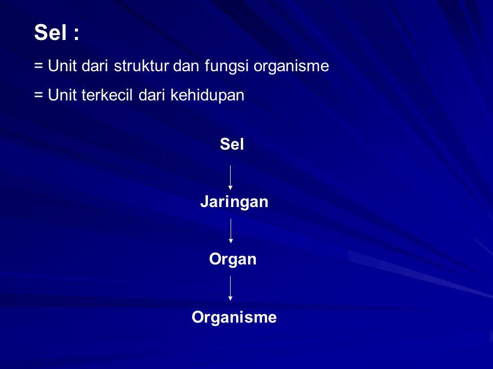 Sel : = Unit dari struktur dan fungsi organisme