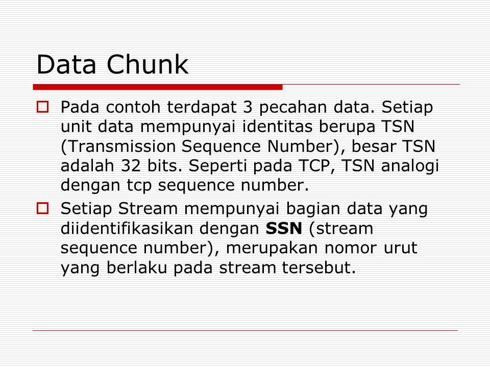 Data Chunk