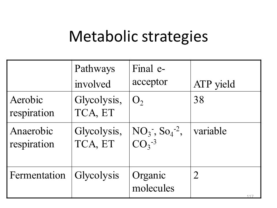 Metabolic strategies Pathways involved Final e- acceptor ATP yield