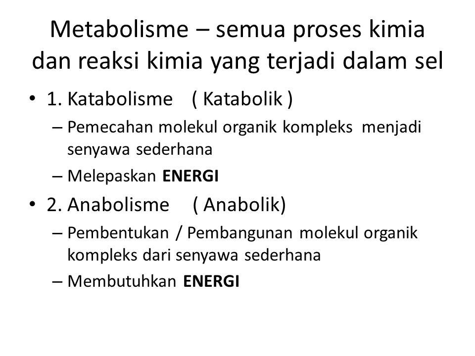 Metabolisme – semua proses kimia dan reaksi kimia yang terjadi dalam sel