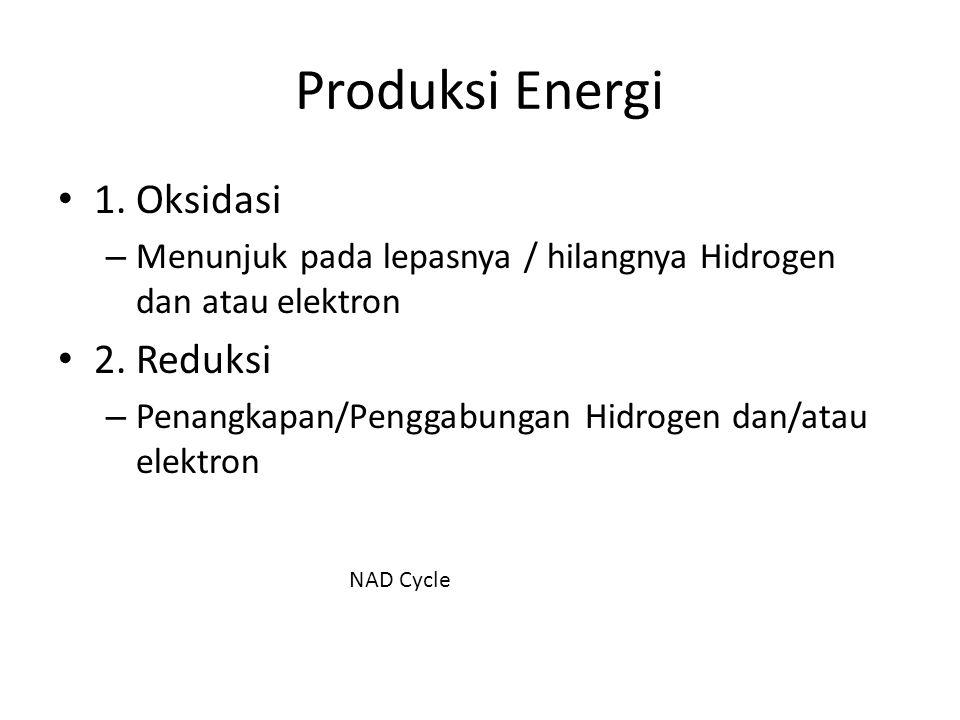 Produksi Energi 1. Oksidasi 2. Reduksi