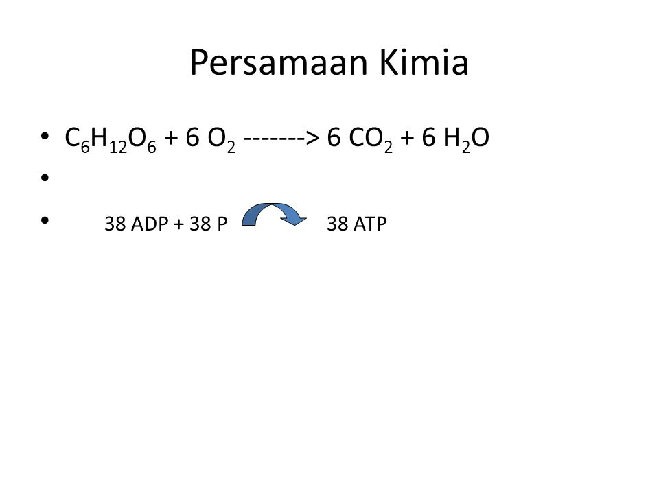 Persamaan Kimia C6H12O6 + 6 O2 -------> 6 CO2 + 6 H2O