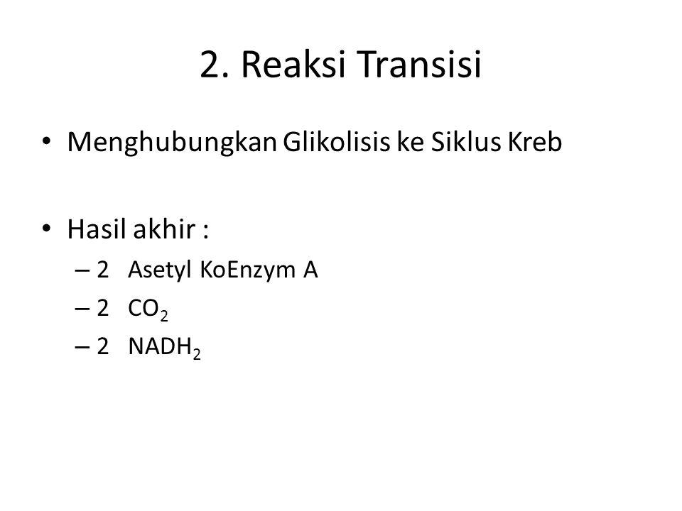 2. Reaksi Transisi Menghubungkan Glikolisis ke Siklus Kreb