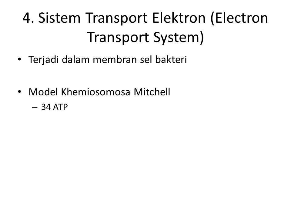 4. Sistem Transport Elektron (Electron Transport System)