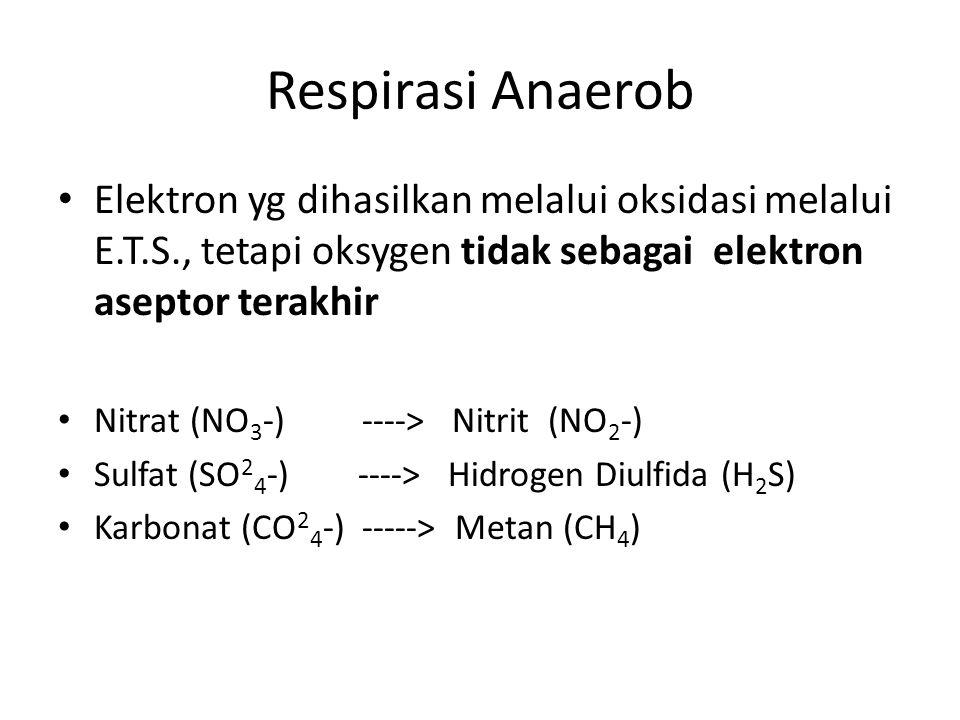 Respirasi Anaerob Elektron yg dihasilkan melalui oksidasi melalui E.T.S., tetapi oksygen tidak sebagai elektron aseptor terakhir.
