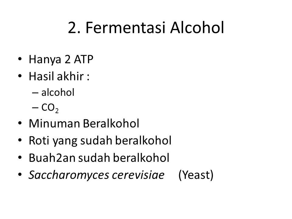 2. Fermentasi Alcohol Hanya 2 ATP Hasil akhir : Minuman Beralkohol