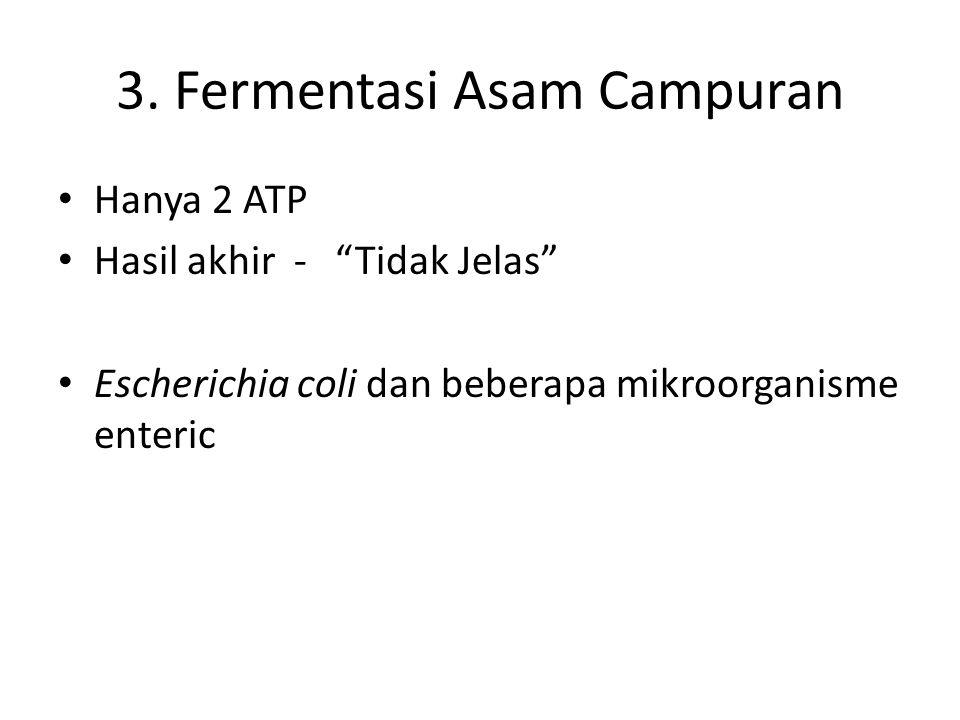 3. Fermentasi Asam Campuran