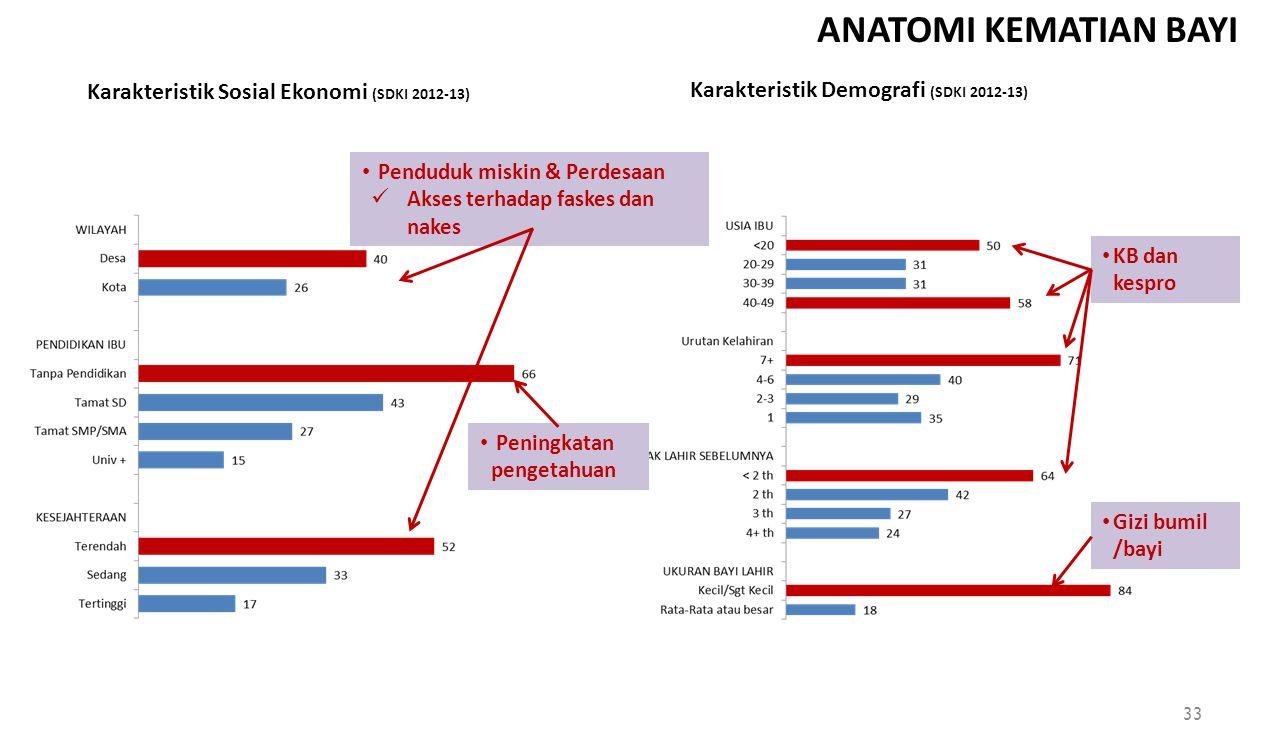 ANATOMI KEMATIAN BAYI Karakteristik Sosial Ekonomi (SDKI 2012-13)
