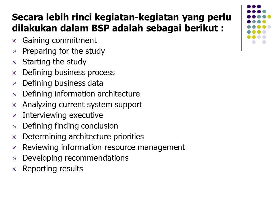Secara lebih rinci kegiatan-kegiatan yang perlu dilakukan dalam BSP adalah sebagai berikut :