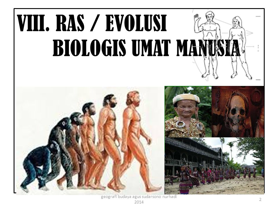 VIII. RAS / EVOLUSI BIOLOGIS UMAT MANUSIA