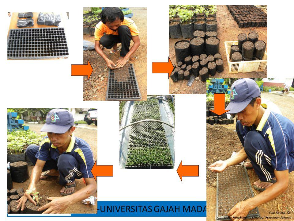 Yudi Sastro, Dr. Balai Pengkajian Teknologi Pertanian Jakarta