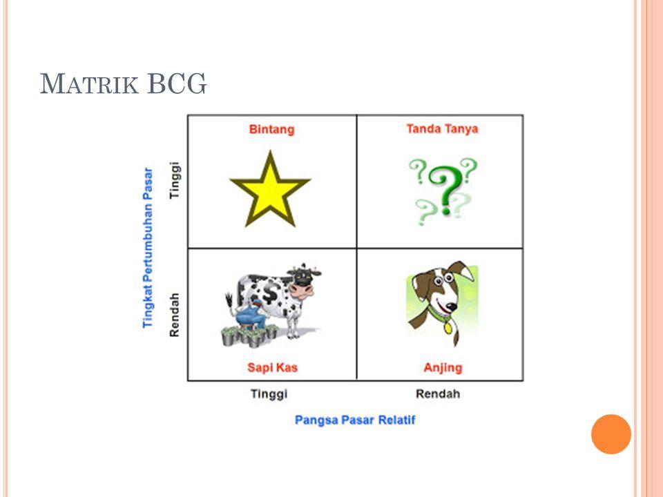 Matrik BCG