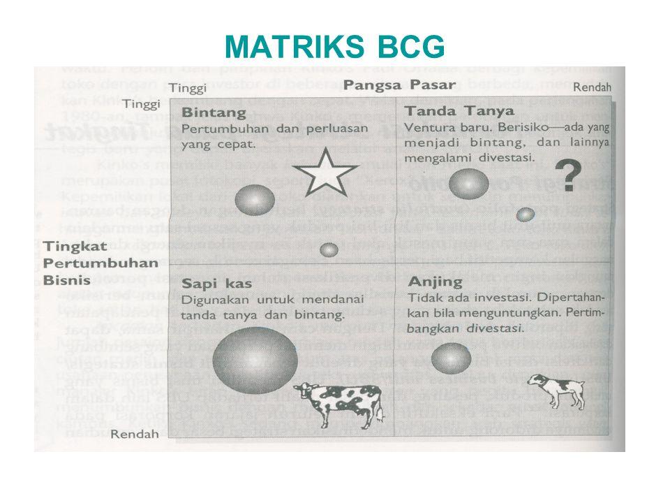 MATRIKS BCG