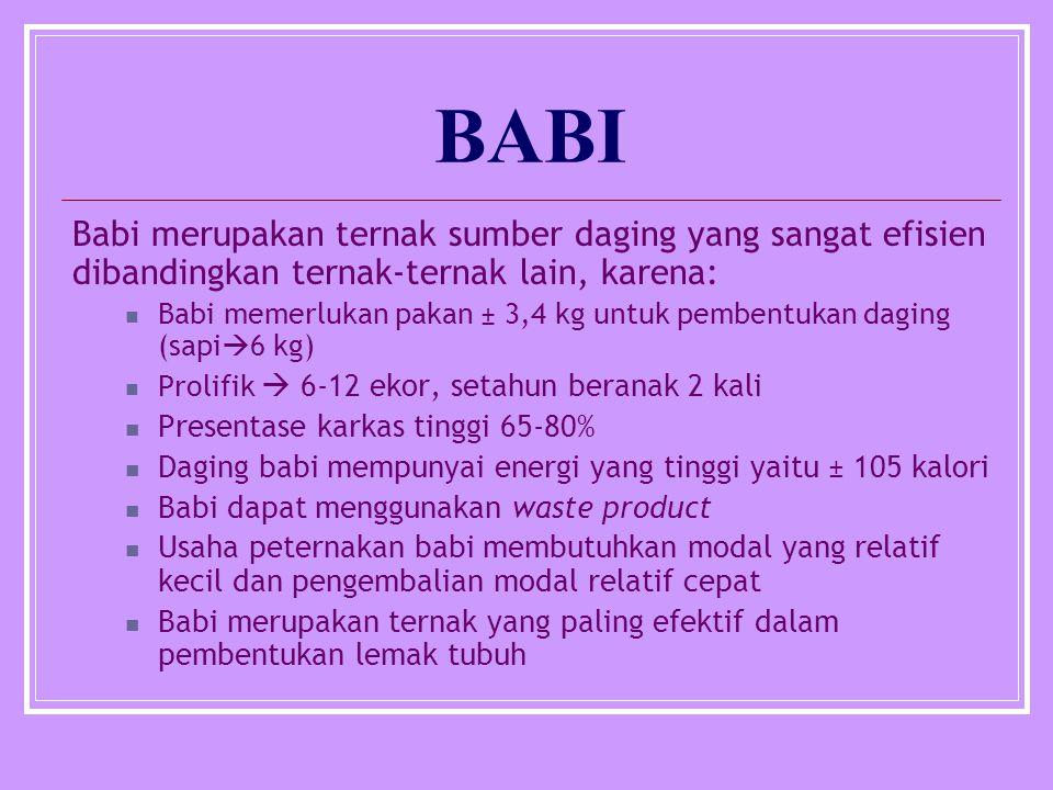 BABI Babi merupakan ternak sumber daging yang sangat efisien dibandingkan ternak-ternak lain, karena: