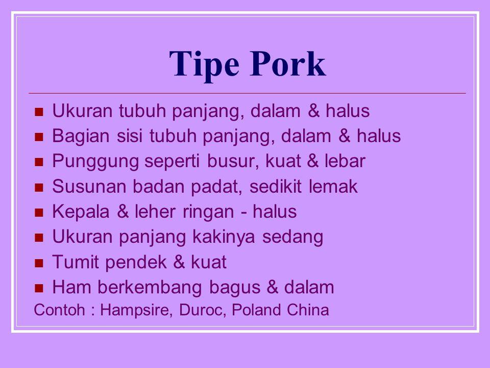Tipe Pork Ukuran tubuh panjang, dalam & halus