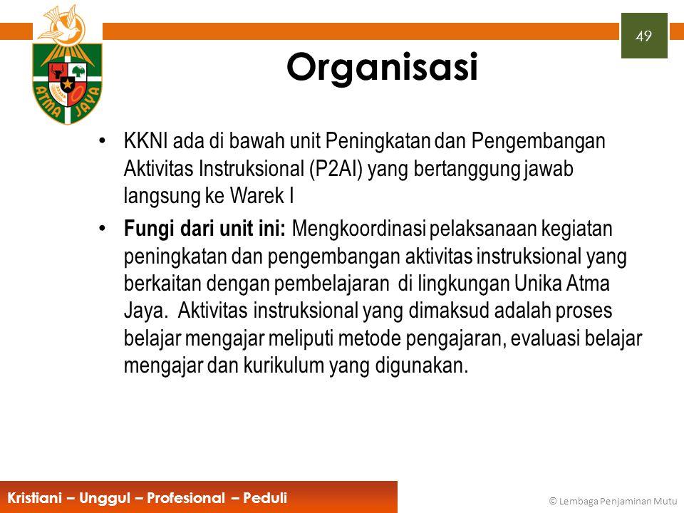 Organisasi KKNI ada di bawah unit Peningkatan dan Pengembangan Aktivitas Instruksional (P2AI) yang bertanggung jawab langsung ke Warek I.