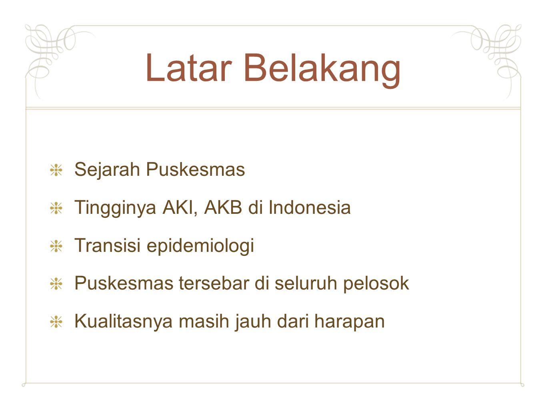 Latar Belakang Sejarah Puskesmas Tingginya AKI, AKB di Indonesia