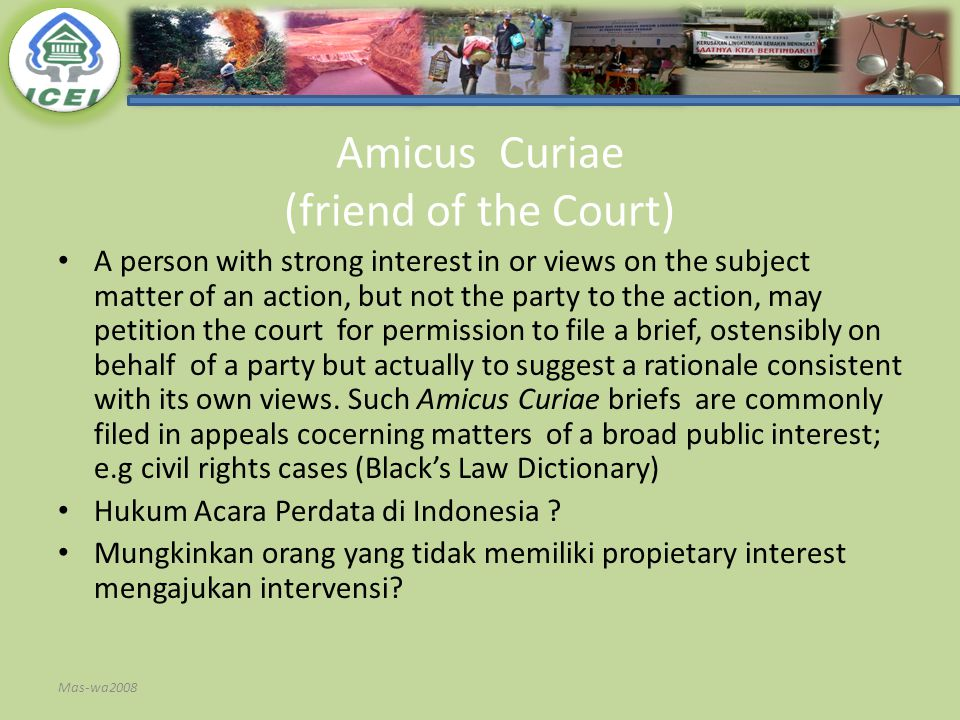 Amicus Curiae (friend of the Court)