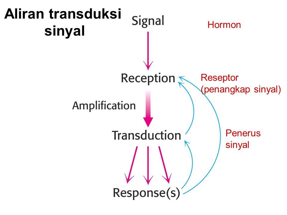 Aliran transduksi sinyal