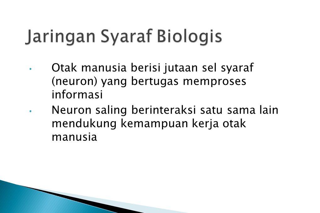 Jaringan Syaraf Biologis
