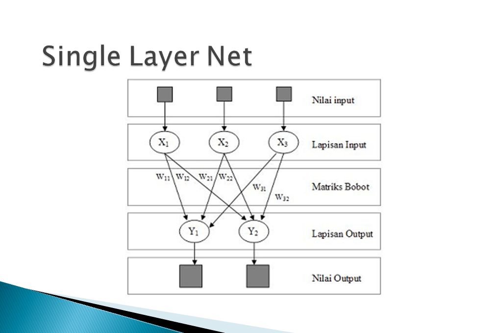 Single Layer Net
