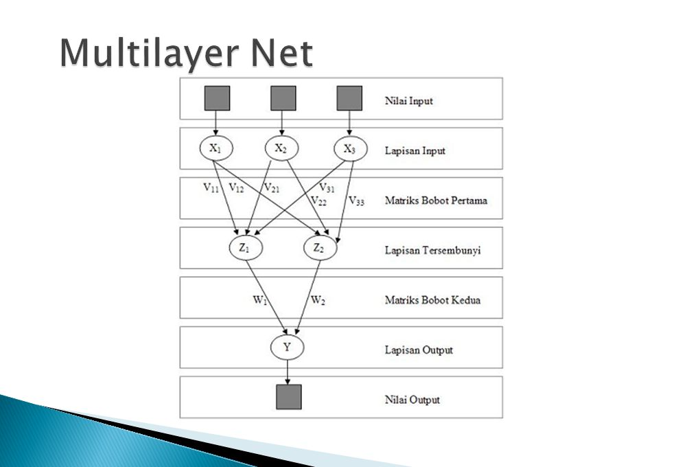 Multilayer Net
