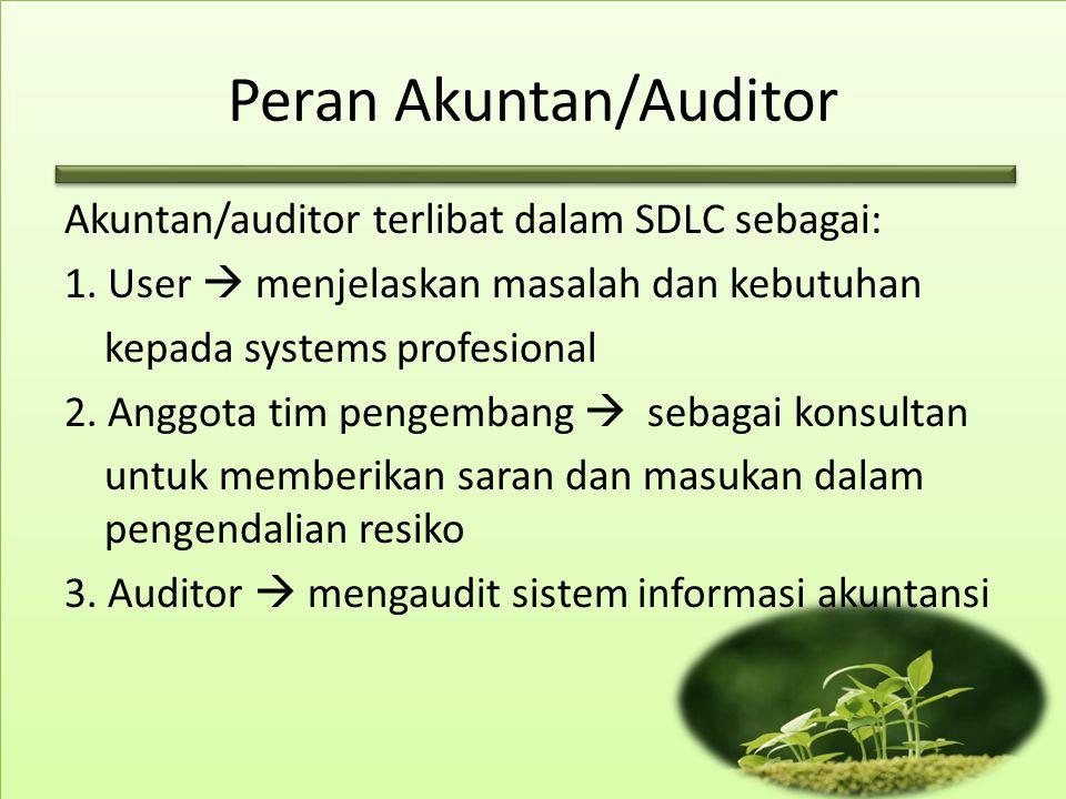 Peran Akuntan/Auditor