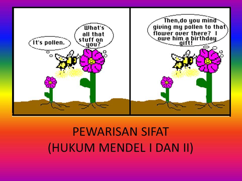 PEWARISAN SIFAT (HUKUM MENDEL I DAN II)