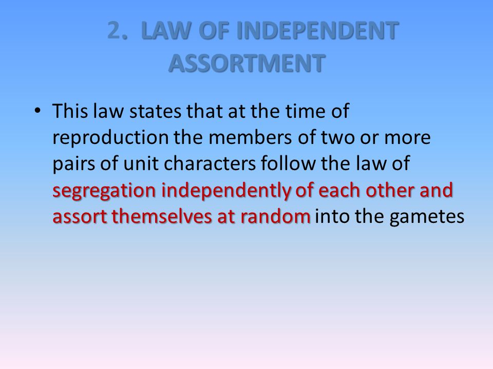 2. LAW OF INDEPENDENT ASSORTMENT