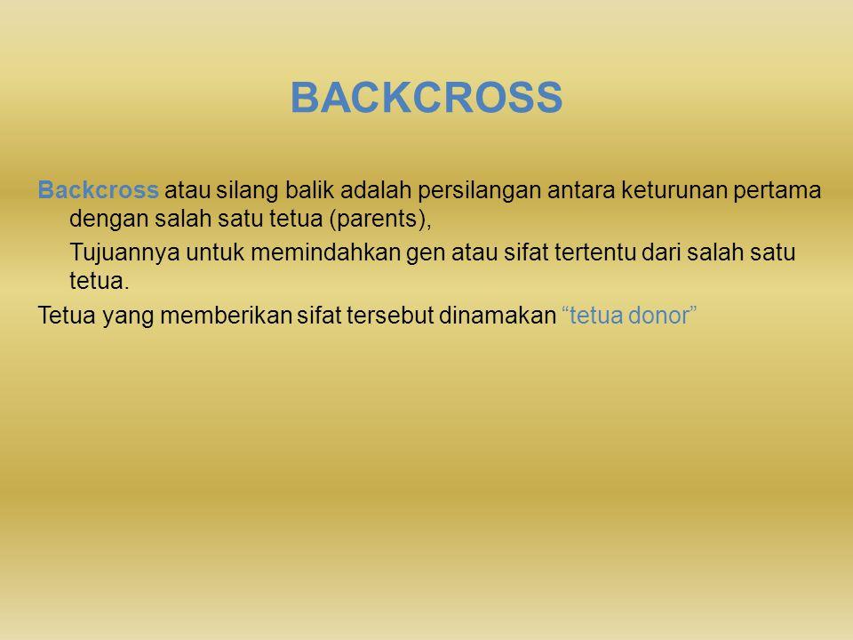 BACKCROSS Backcross atau silang balik adalah persilangan antara keturunan pertama dengan salah satu tetua (parents),