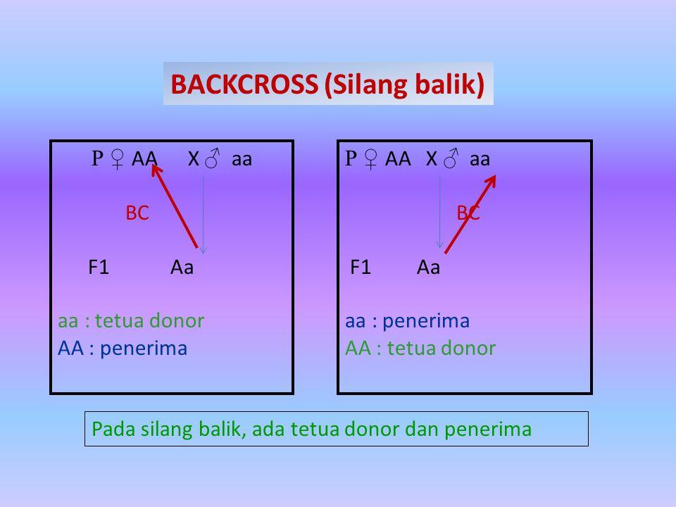 BACKCROSS (Silang balik)