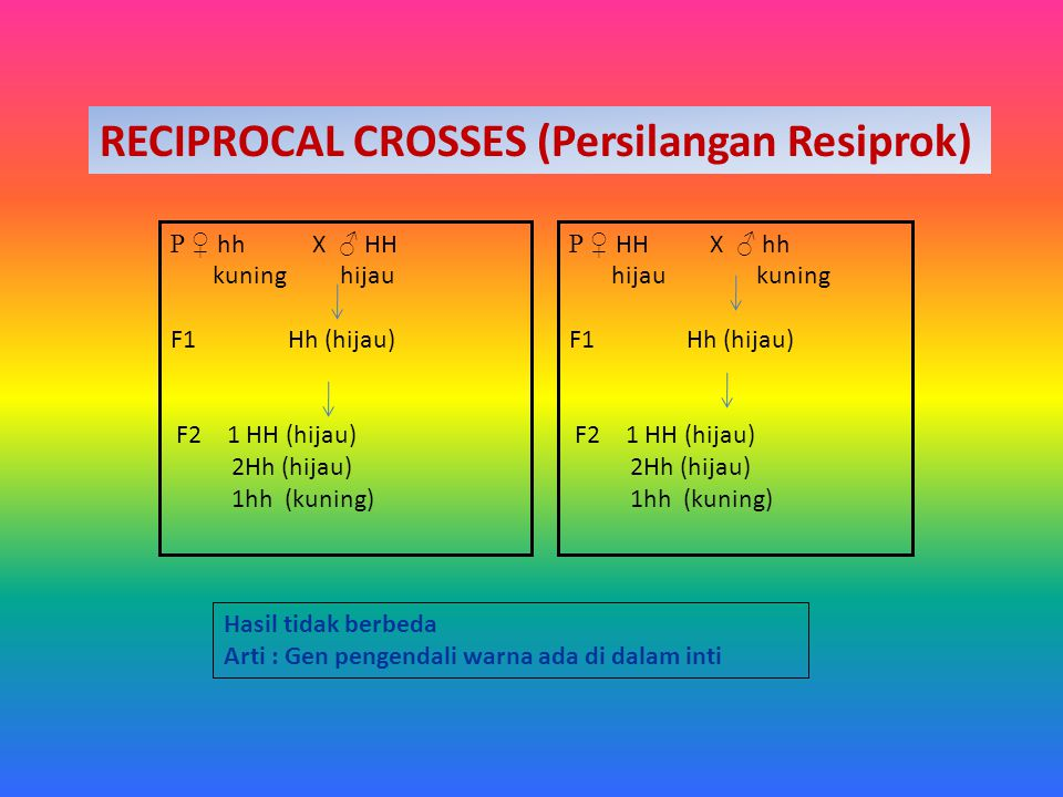 RECIPROCAL CROSSES (Persilangan Resiprok)