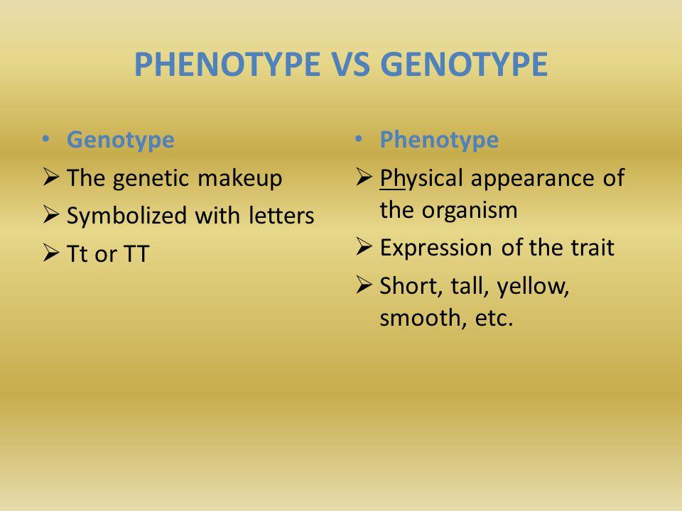 PHENOTYPE VS GENOTYPE Genotype The genetic makeup