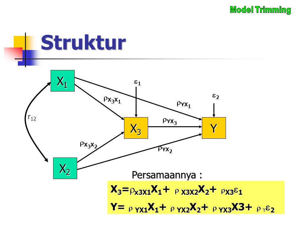 Struktur X1 X3 Y X2 Persamaannya : X3=x3X1X1+  X3X2X2+ X31