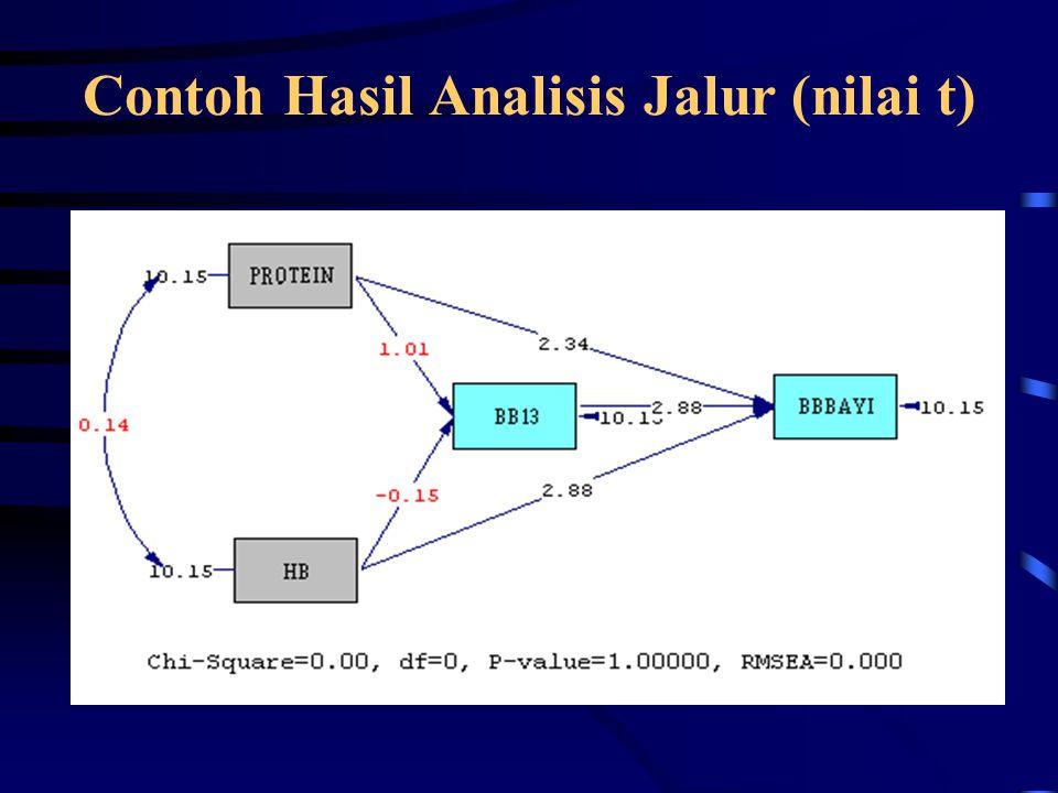 Contoh Hasil Analisis Jalur (nilai t)