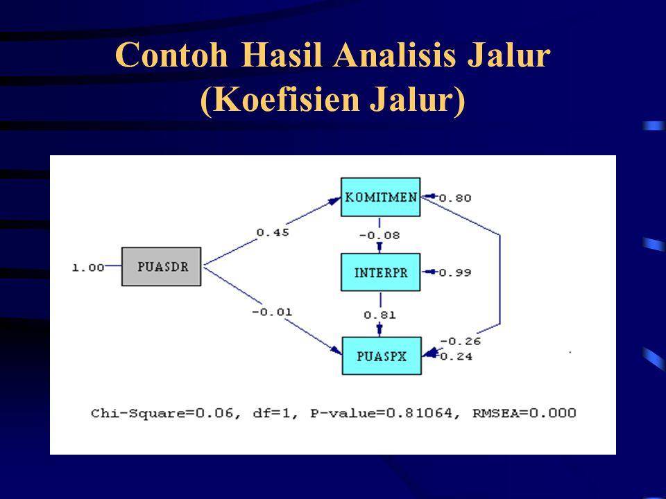 Contoh Hasil Analisis Jalur (Koefisien Jalur)