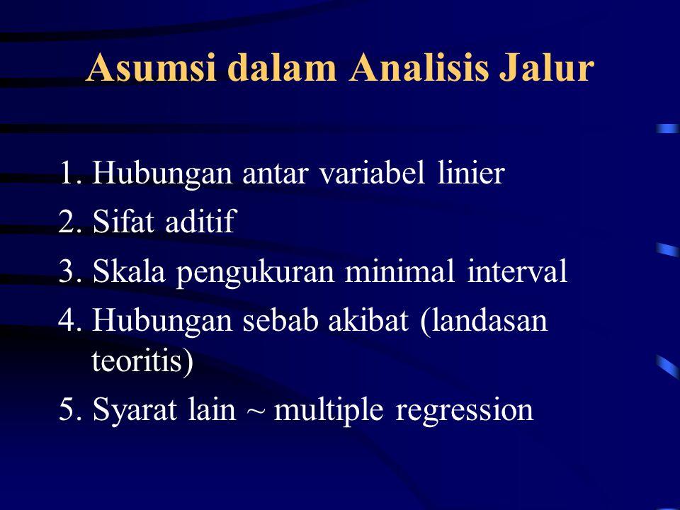 Asumsi dalam Analisis Jalur