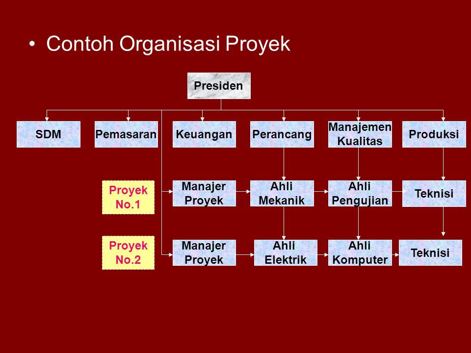 Contoh Organisasi Proyek